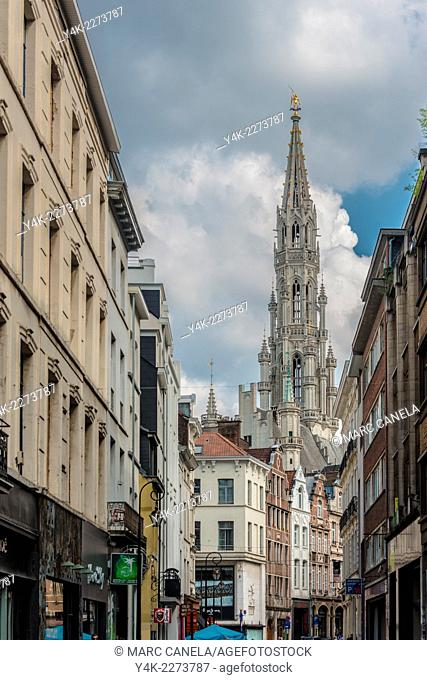 The Grand Place or Grote Markt is the central square of Brussels. It is surrounded by guildhalls, the city's Town Hall, and the Breadhouse Maison du Roi