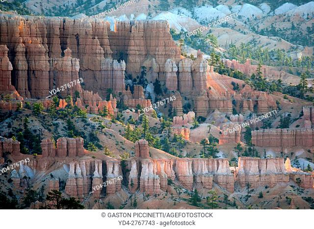 Hoodoos in the Bryce, Bryce Canyon National Park, Utah, USA