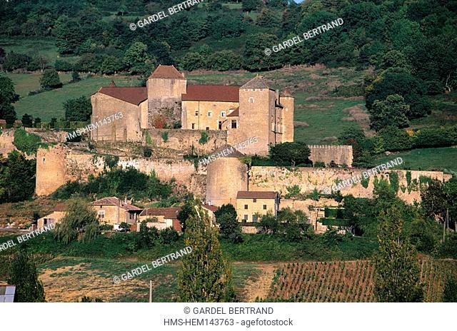 France, Saone et Loire, Maconnais area, Berze le Chatel, feudal castle in the middle of vineyard
