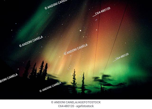 Aurora Borealis or Nothern Lights. Yukon territory. Canada