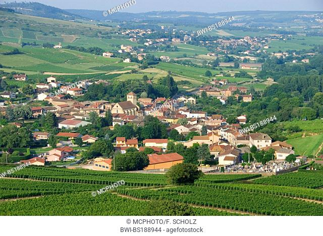 view onto the village Pierreclos, France, Bourgogne