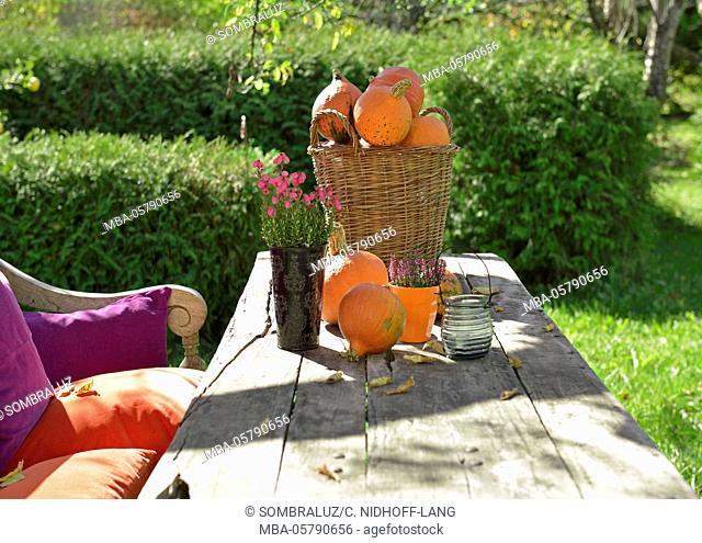 decorated garden bench and garden table