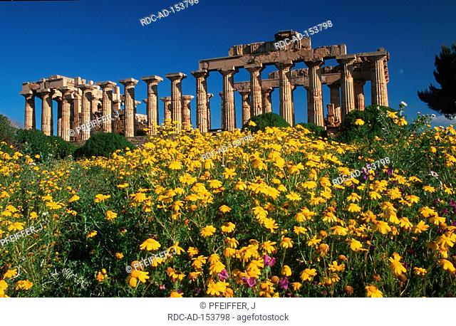 Temple of Selinunte columns valley of the temples Selinunte Sicily Italy Tempio di Selinunte