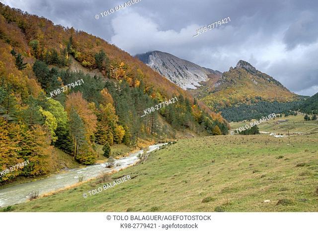 Ravine of Petraficha, Zuriza, western valleys, Pyrenean mountain range, province of Huesca, Aragon, Spain