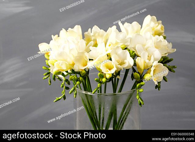 White freesia flowers in decorative vase on a background of gray wall