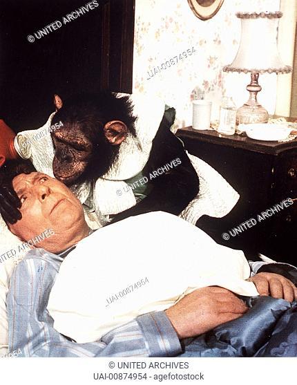 wir hau'n die pauker in die pfanne - Direktor Taft (THEO LINGEN) traut seinen Augen nicht: Was hat der Affe nur in seinem Bett zu suchen ? Regie: Harald Reinl /...