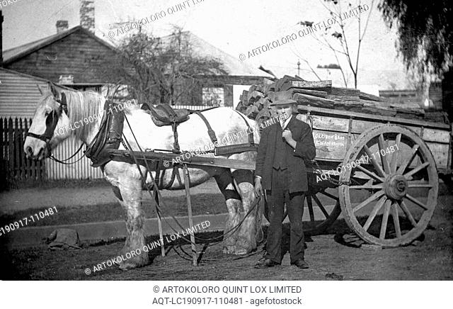 Negative - Morrison Bros Horse Cart Loaded with Firewood, Wangaratta North, Victoria, circa 1930, A man with a horse and cart with a load of wood