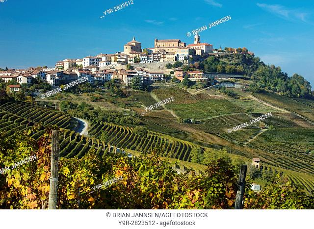 View over Nebbiola vineyards to medieval town of La Morra, Piemonte, Italy