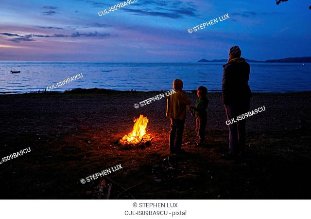 Mother and sons beside camp fire, looking at lake view, rear view, Copacabana, Oruro, Bolivia, South America
