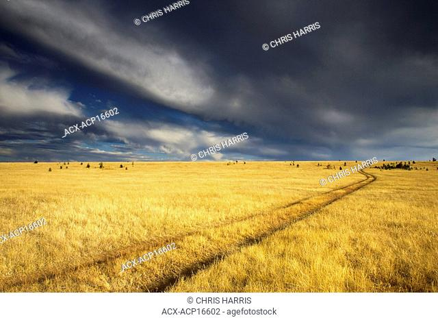 Storm clouds over Beecher's Prairie in the grasslands of British Columbia, Canada