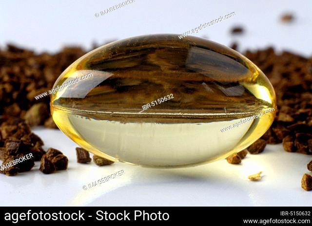 Evening primrose (Oenothera biennis), seed and capsule with Common evening primrose oil, Common evening primrose oil