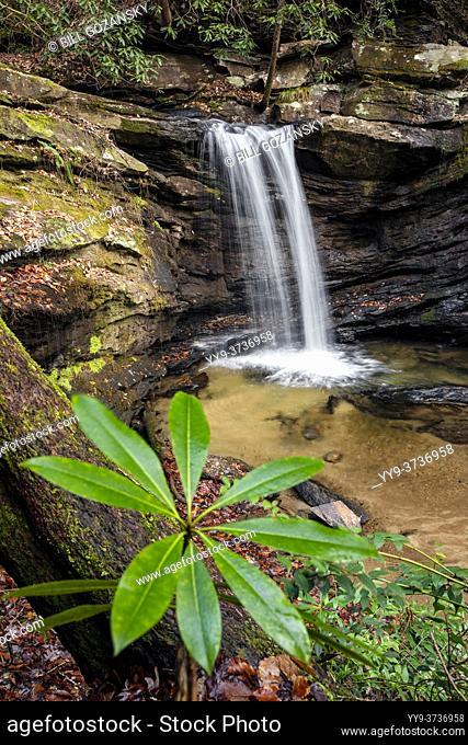 Sweet Thing Falls on Slickum Creek - near Cleveland, South Carolina, USA