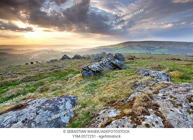 Hayne Down, Dartmoor National Park, Manaton, West Devon, England, UK, Europe