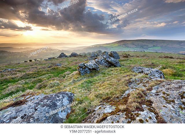 Hayne Down, Dartmoor National Park, Manaton, West Devon, England, UK, Europe