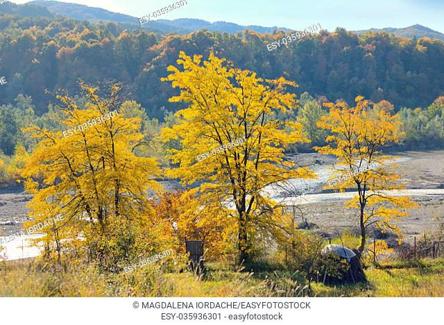 Autumn foliage over romanian river