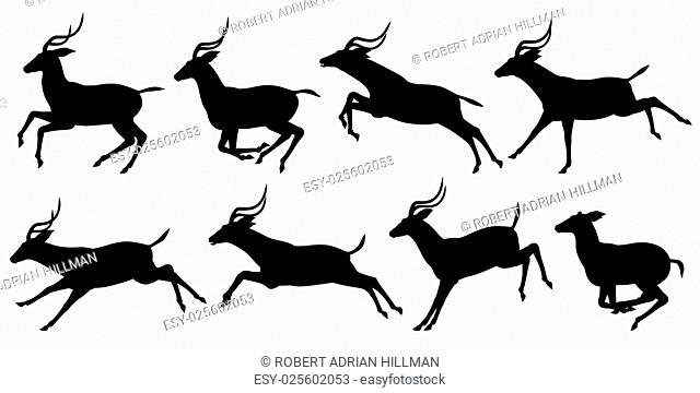 Set of editable vector silhouettes of running impala antelopes