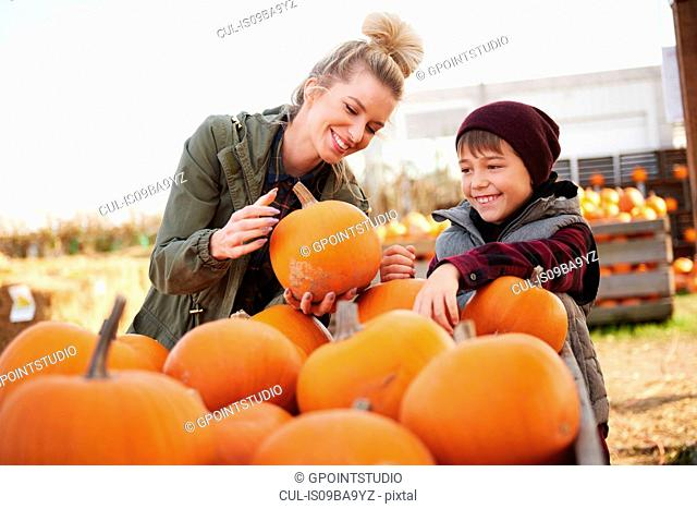 Young woman and boy selecting pumpkins in pumpkin patch field