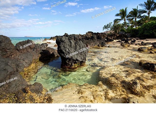 Hawaii, Maui, Makena, Beautiful Clear Ocean Among Lava Rock