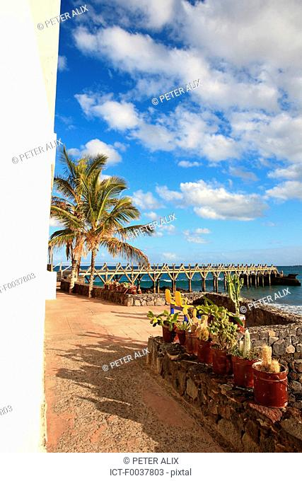 Spain, Canary islands, Lanzarote, Arrieta