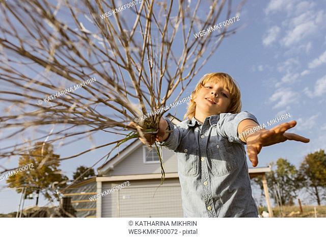 Portrait of boy with twigs