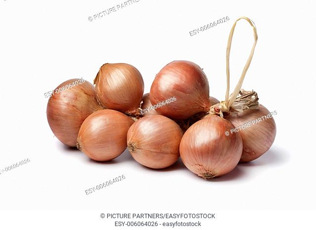 Pink Roscoff onions on white background