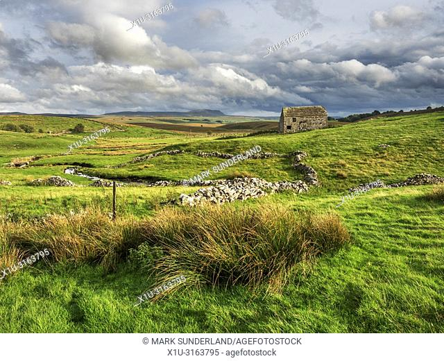 Field barn near Ribblehead with Pen Y Ghent in the distance Yorkshire Dales England
