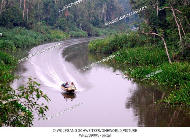 Indonesia, Kalimantan, Borneo, Kotawaringin Barat, Tanjung Puting National Park, By boat on the Sekonyer River