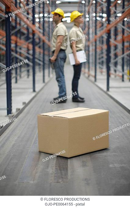 Cardboard box and workers in warehouse