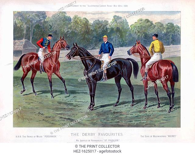 'The Derby Favourites', 30 May 1896. The Prince of Wales' horse Persimmon, Leopold de Rothschild's St Frusquin, and the Duke of Westminster's Regret