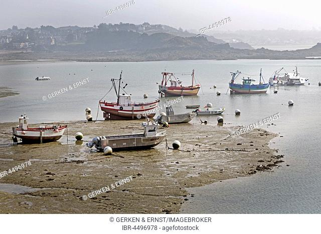 Fishing boats in watts at low tide, Erguy, Brittany, France