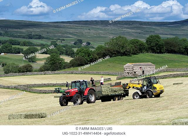 Picking up small bales of hay in upland meadow in Wensleydale