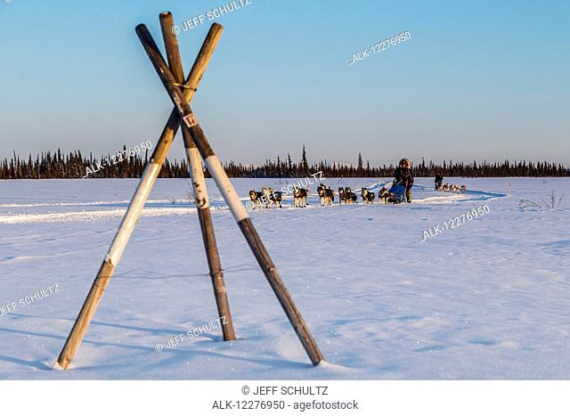 Lev Shvarts leads Marcelle Fressineau past a tripod trail marker as they run on a swamp a few miles before the Huslia checkpoint during Iditarod 2015