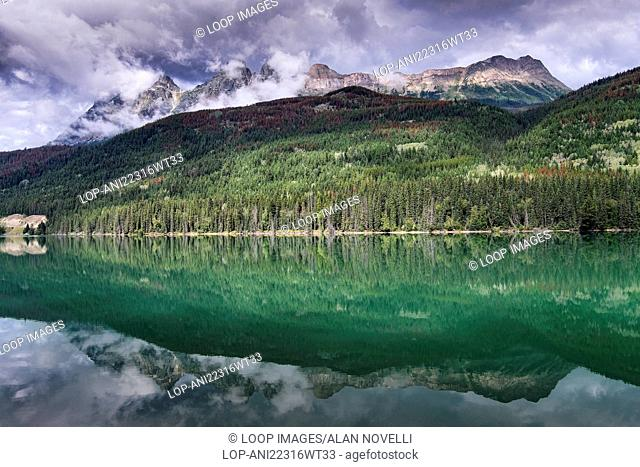 Mount Fitzwilliam reflected in Yellowhead Lake at the turn of fall in the Canadian Rockies