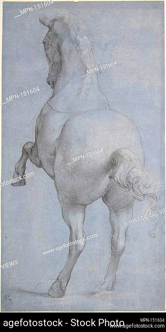 Rearing Horse in Rear Three-Quarter View. Artist: Anonymous, Italian, Florentine, 16th century; Date: 16th century; Medium: Black and white chalk on paper...