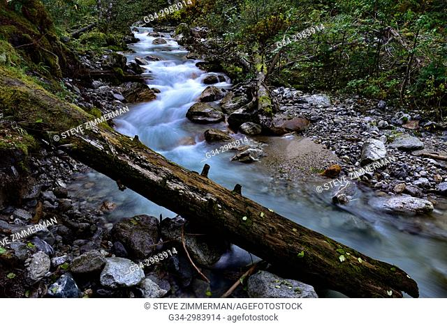 In the Flow. Colonial Creek, North Cascades, Washington, USA