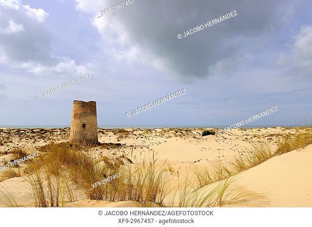 Torre Carbonero. Doñana National Park. Huelva province. Andalusia. Spain