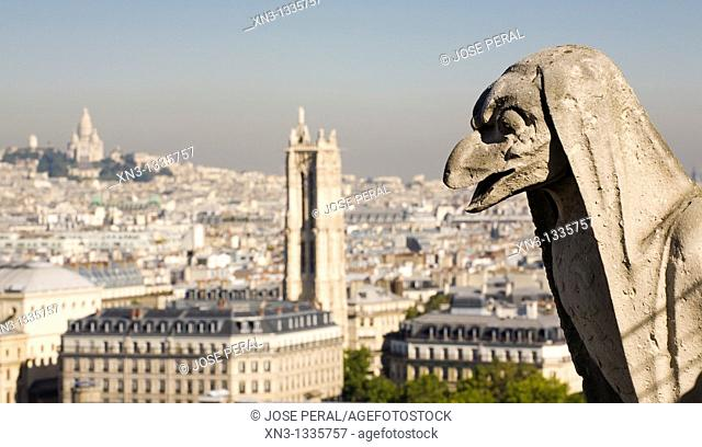 View of the rooftops and gargoyle from the top of Notre Dame Cathedral. background on left Sacre Coeur, Paris. France