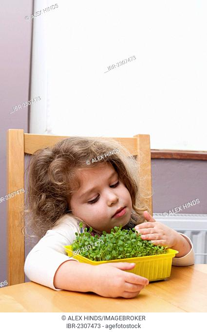 Young girl with arms around a tray of flower seedlings