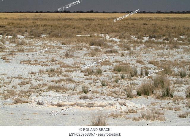 the etosha salt pan in namibia