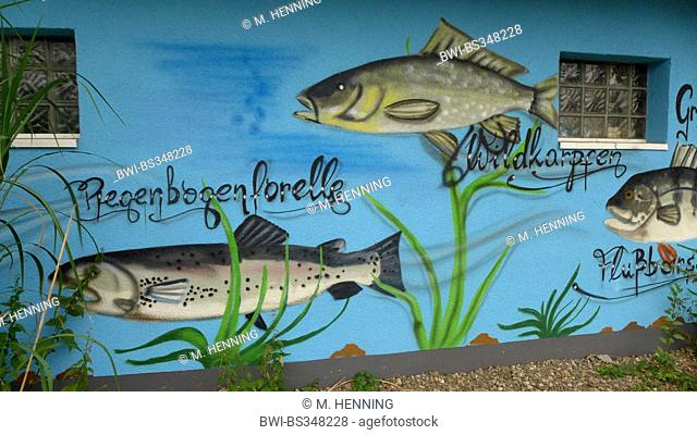 fresh water fishes painted on a house wall, Germany