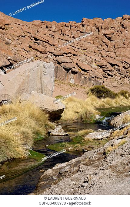 Thermal waters, Atacama Desert, Region of Antofagasta, Santiago, Chile