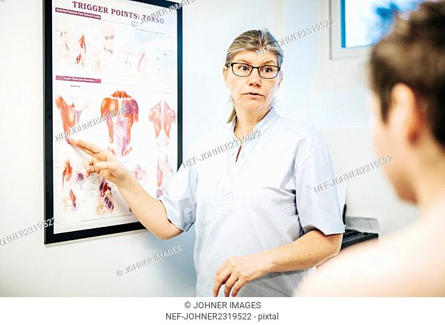 Massage therapist showing muscles on poster