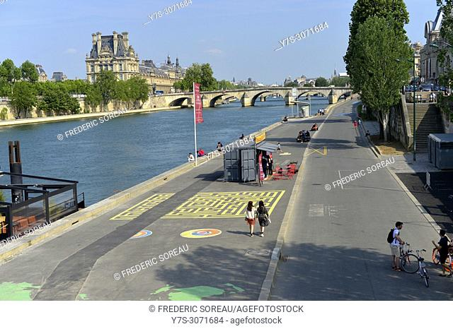 The bank of the River Seine, Paris, France, Europe