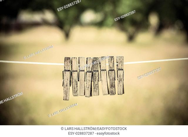 Empty clothesline and clothes pins with garden in the background