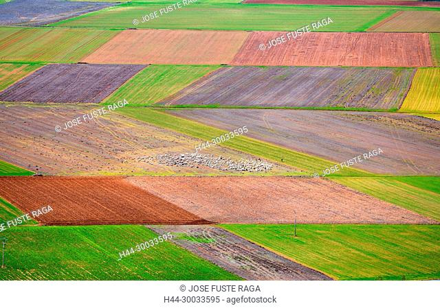 Spain, Soria Province , aerial view