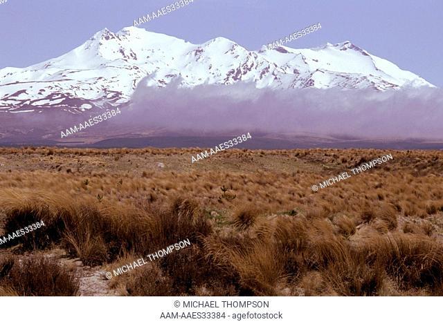 Mount Ruapehu, New Zealand Tongariro Natl Park rises 2, 796 m above Rangipo Desert south of Lake Taupo