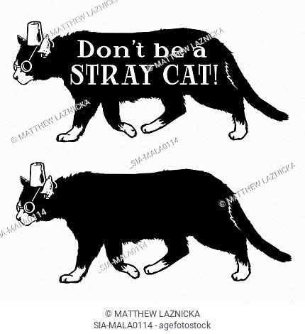 Two cats with hats and glasses with sign 'Don't be a stray cat'