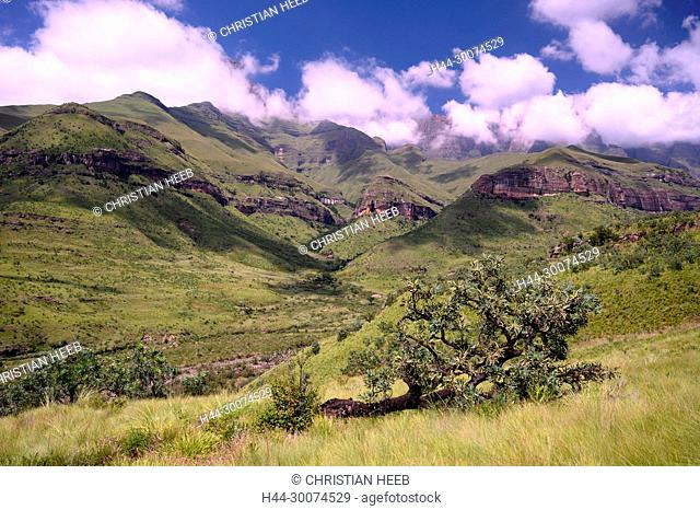 Africa, South Africa, African, Northern, Drakensberg, KwaZulu-Natal, Royal Natal National Park