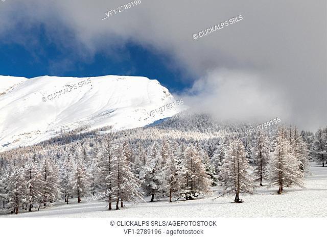 Orsiera Rocciavre Park, Chisone Valley,Turin, Piedmont, Italy. Winter Orsiera Rocciavre Park