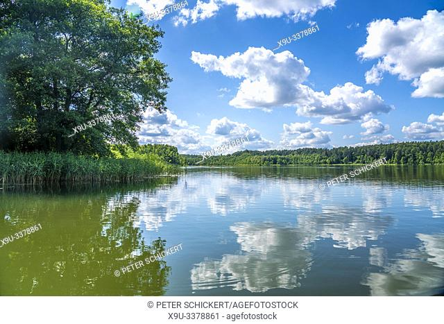 Wet Lake Jezioro MokreL at the UNESCO biosphere reserve Masurian Lakes near Krutyn, Warmian-Masurian, Poland, Europe